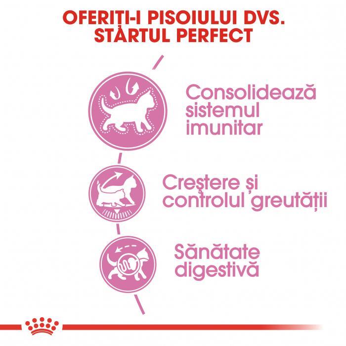 ROYAL CANIN Sterilised Kitten 2 kg 3