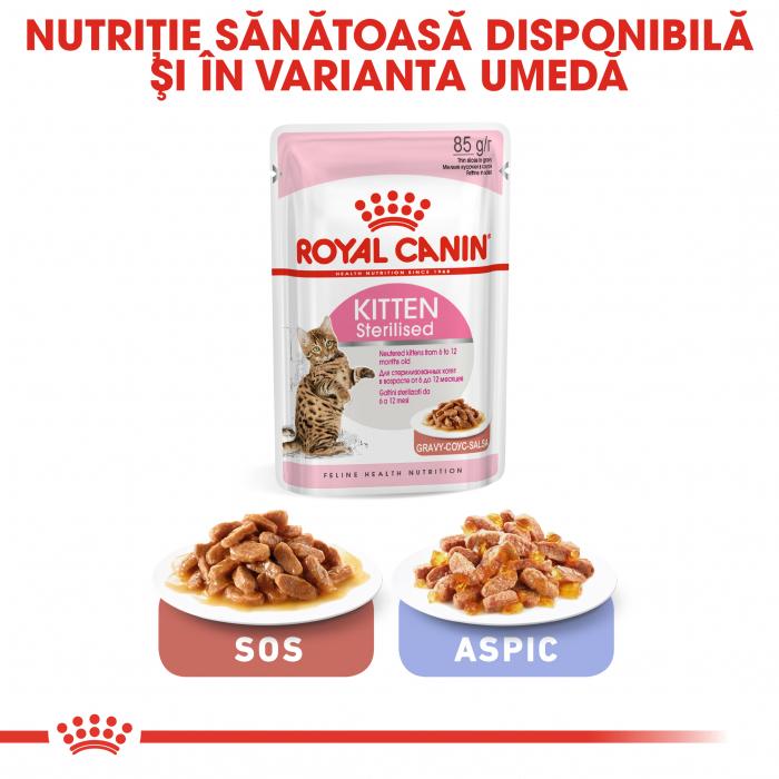 ROYAL CANIN Sterilised Kitten 2 kg 6