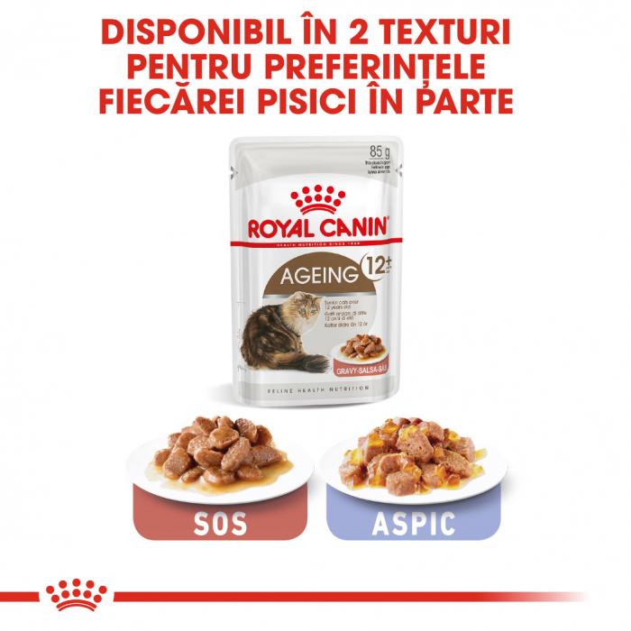 Royal Canin Ageing 12+ Cat hrana umeda in sos pentru pisici 12*85g 7