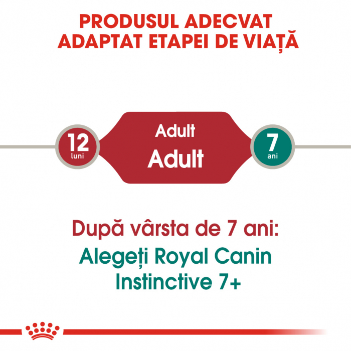 ROYAL CANIN Instinctive hrana umeda in aspic 12x85g 2