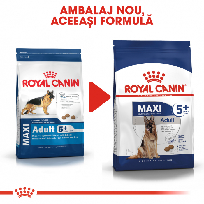 ROYAL CANIN Maxi Adult 5+, 4 kg 1