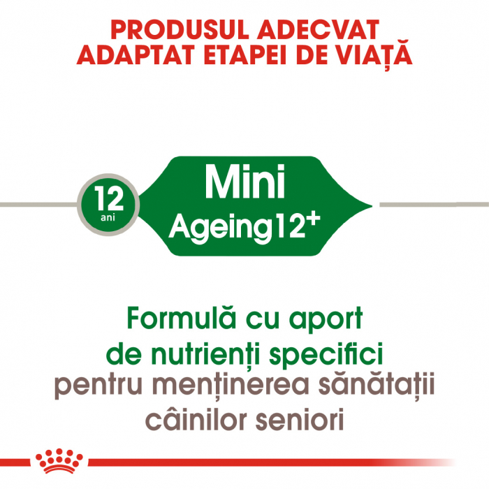 ROYAL CANIN Mini Ageing 12+, 1.5 kg 1