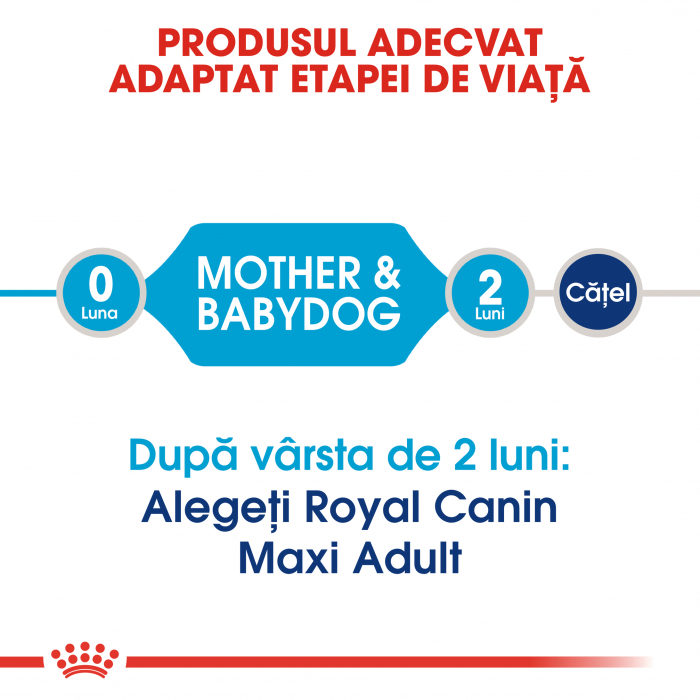 ROYAL CANIN Maxi Starter Mother&Babydog 15 kg 3