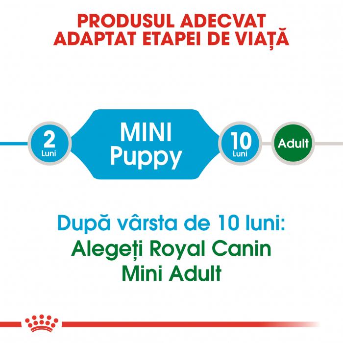 Royal Canin Mini Puppy hrana uscata pentru caini 8 kg 2
