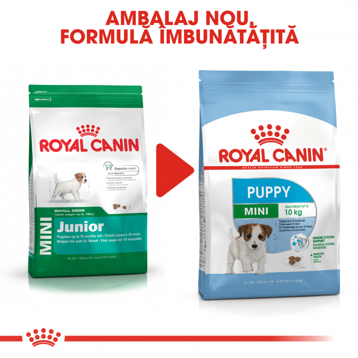 Royal Canin Mini Puppy hrana uscata pentru caini 8 kg 1