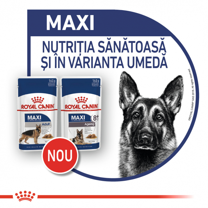 ROYAL CANIN Maxi Adult hrana umeda 10x140g 7
