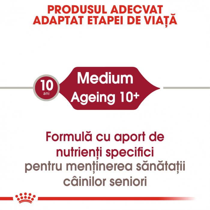 ROYAL CANIN Medium Ageing hrana umeda, 12*85 g 1