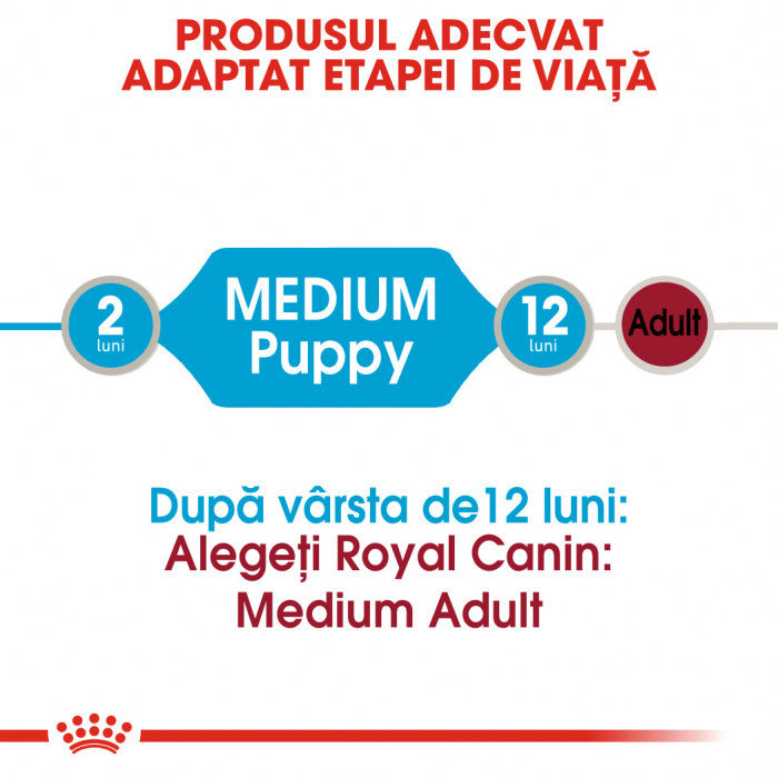 ROYAL CANIN Medium Puppy hrana umeda 10x140g 1