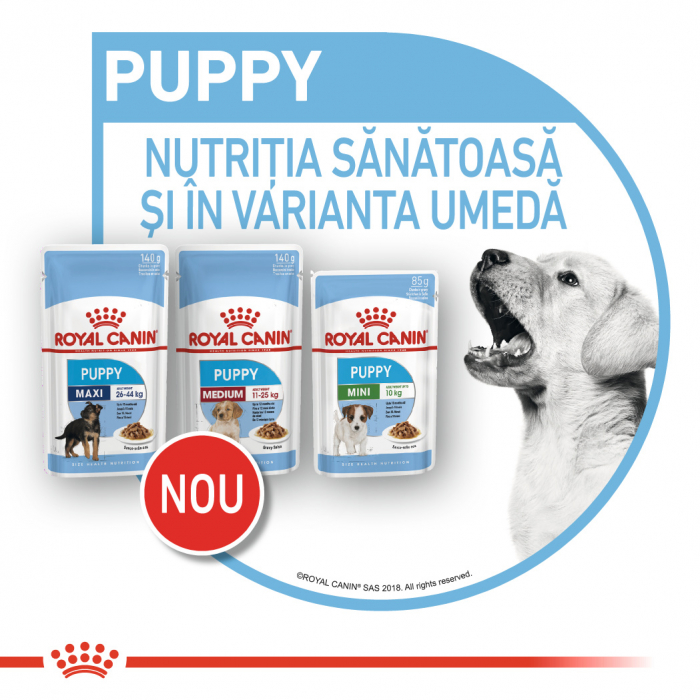 ROYAL CANIN Medium Puppy hrana umeda 10x140g 7