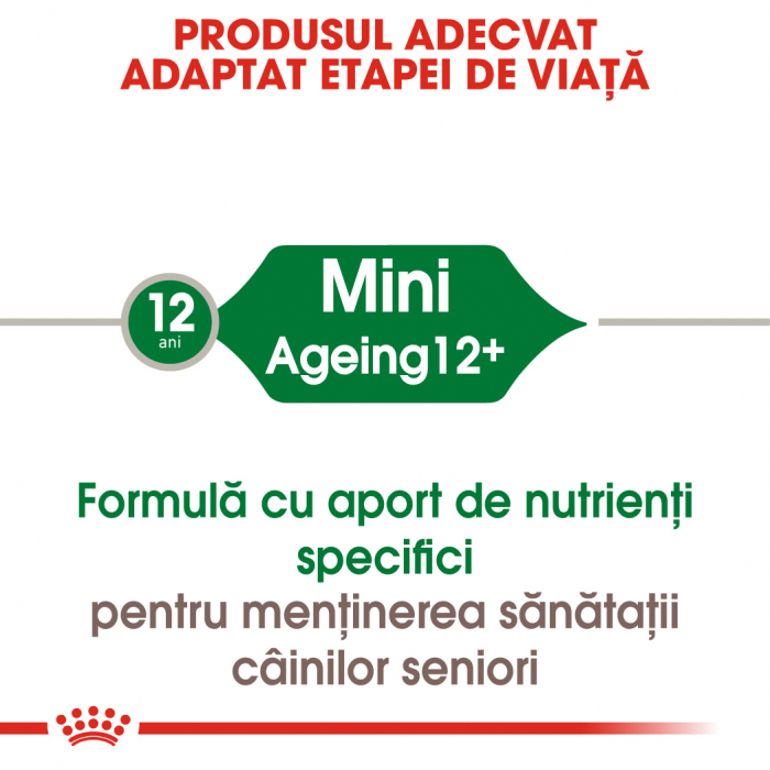ROYAL CANIN Mini Ageing hrana umeda 12x85g 1