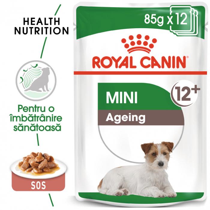 ROYAL CANIN Mini Ageing hrana umeda 12x85g 0