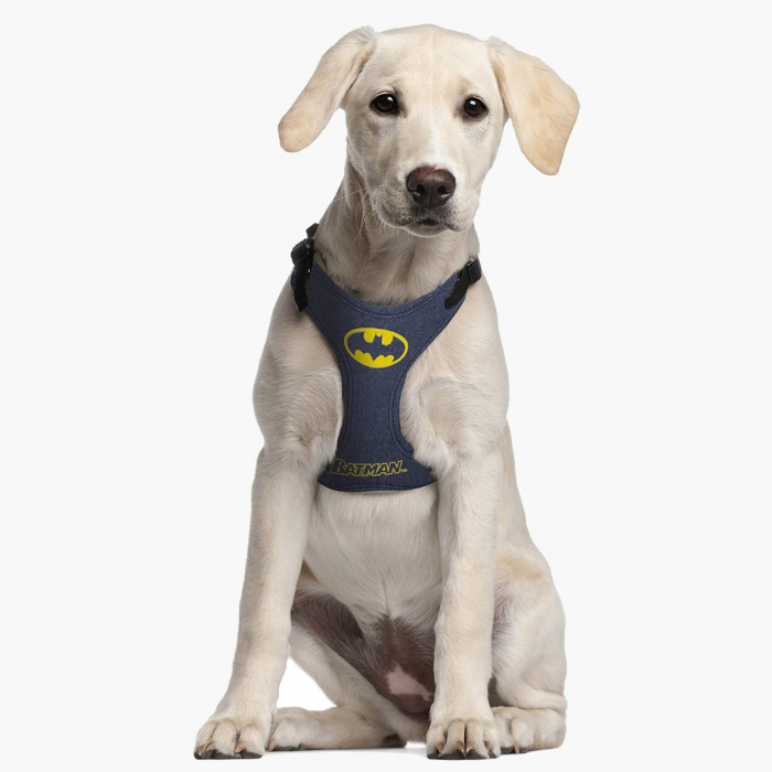 Ham Caini Batman, marimea  S-M 1
