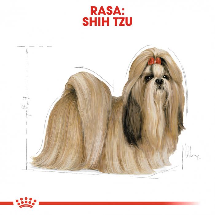 Royal Canin Shih-Tzu Adult hrana uscata pentru caini 1.5 kg 2