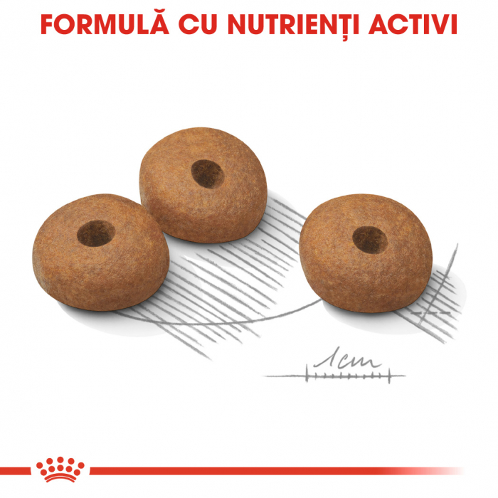 ROYAL CANIN Light Weight Care Mini 8 kg 4