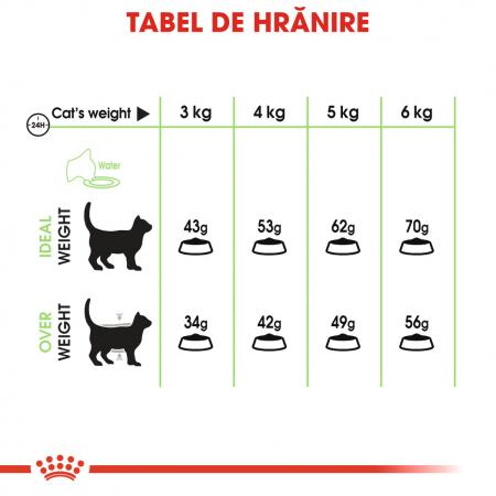 CADOU Royal Canin Digestive Care 2 kg + 5x Purina Pro Plan Cat Delicate Peste 85 g [2]