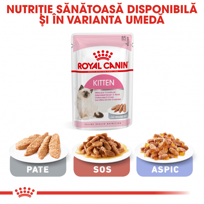 ROYAL CANIN Kitten 4 kg 6