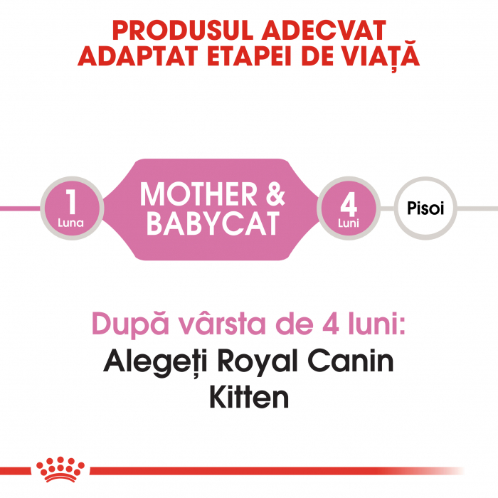 ROYAL CANIN Mother&Babycat 400g+400 g gratuit 4