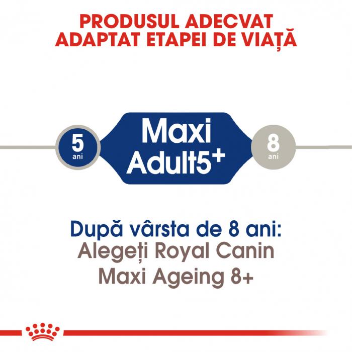 ROYAL CANIN Maxi Adult 5+, 15 kg 4