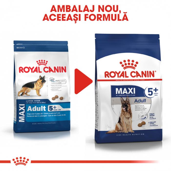 ROYAL CANIN Maxi Adult 5+, 15 kg 1