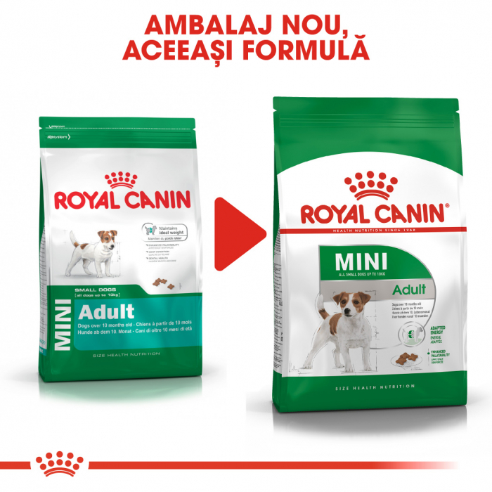 ROYAL CANIN Mini Adult 4 kg 1