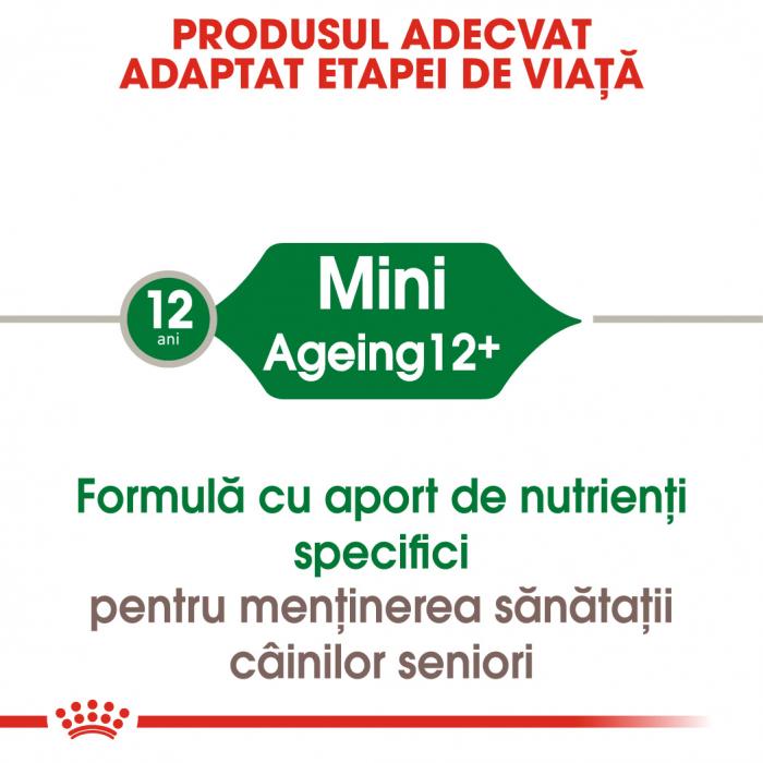 ROYAL CANIN Mini Ageing hrana umeda 85g 1