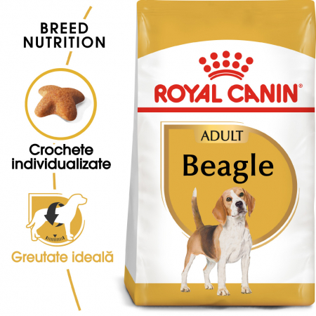 Royal Canin Beagle Adult hrana uscata pentru caini 3 kg0