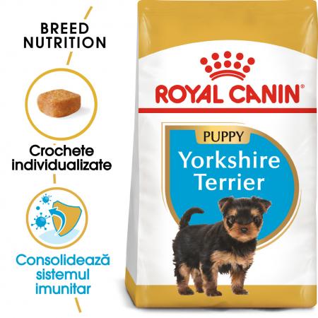 Royal Canin Yorkshire Terrier Puppy hrana uscata pentru caini 1.5 kg0