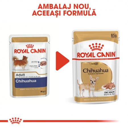 ROYAL CANIN Chihuahua hrana umeda 12x85g4