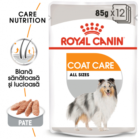 ROYAL CANIN Coat Care hrana umeda 12x85g0