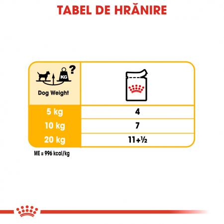 Royal Canin Dermacomfort Loaf hrana umeda pentru caini 12*85g [5]