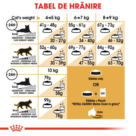 ROYAL CANIN Maine Coon Adult 10 kg4