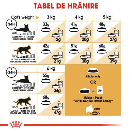 Royal Canin Siamese hrana uscata pentru pisici 2 kg5