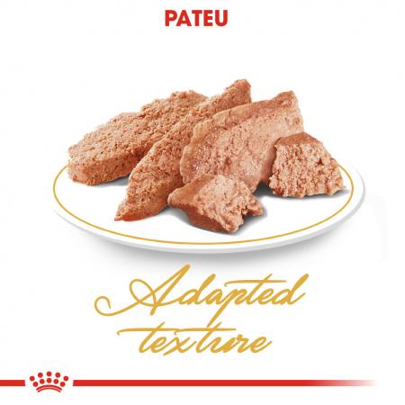 Royal Canin Persian hrana umeda pate pentru pisici 12*85g2