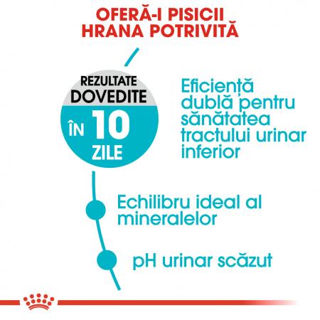 ROYAL CANIN Urinary Care hrana uscata, 10 kg2