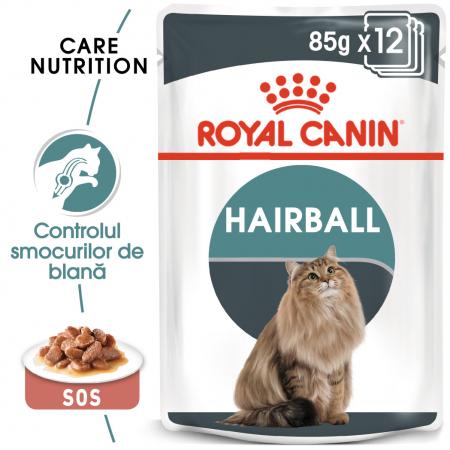 ROYAL CANIN Hairball Care hrana umeda in sos 12x85g0