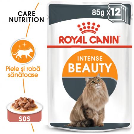 ROYAL CANIN Intense Beauty hrana umeda in sos 12x85g0