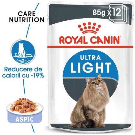 Royal Canin Ultra Light hrana umeda in aspic pentru pisici 12*85 g0