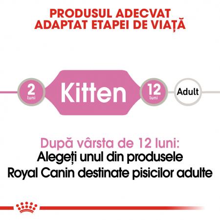 ROYAL CANIN Kitten hrana umeda pate 12x85g1