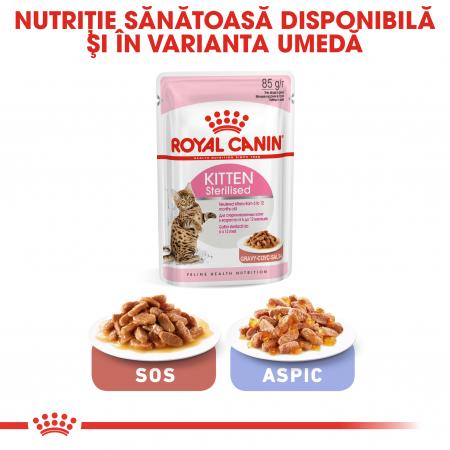 ROYAL CANIN Sterilised Kitten 2 kg6