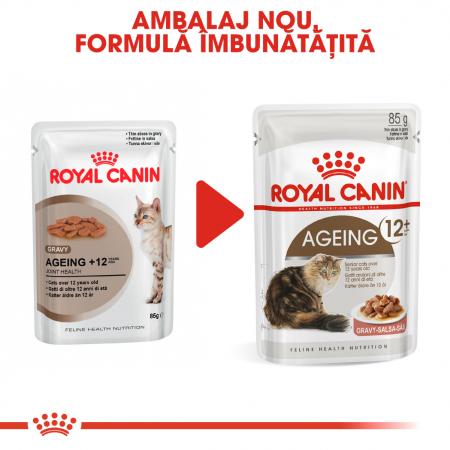 Royal Canin Ageing 12+ Cat hrana umeda in sos pentru pisici 12*85g1