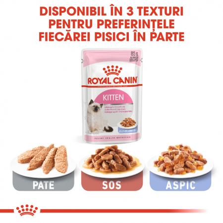 ROYAL CANIN Kitten Instinctive hrana umeda in aspic 12x85g5