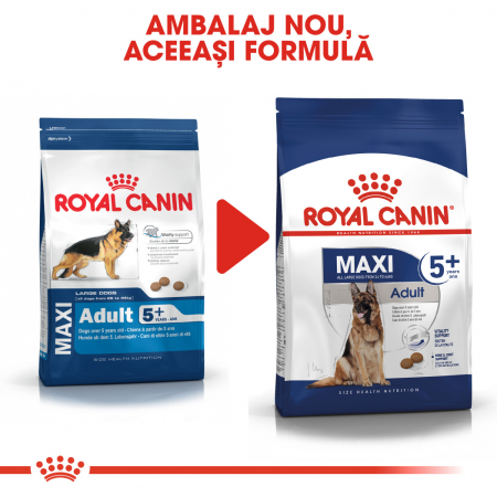 ROYAL CANIN Maxi Adult 5+, 4 kg1