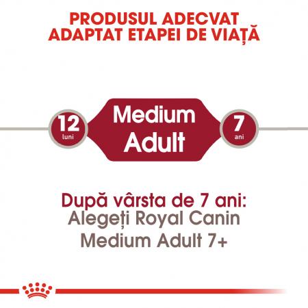 ROYAL CANIN Medium Adult 15 kg4