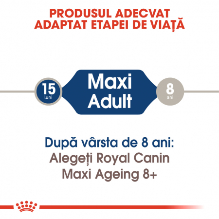 ROYAL CANIN Maxi Adult hrana umeda 10x140g2