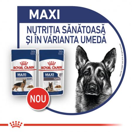 ROYAL CANIN Maxi Adult hrana umeda 10x140g7