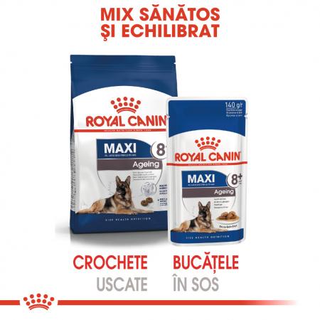 Royal Canin Hrana umeda Maxi Ageing3