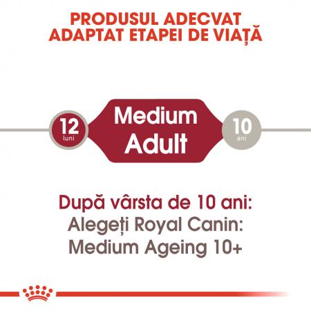 ROYAL CANIN Medium Adult hrana umeda 10x140g1
