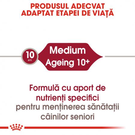 ROYAL CANIN Medium Ageing hrana umeda, 12*85 g1