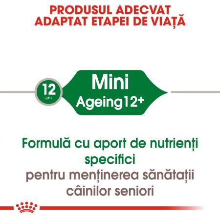 ROYAL CANIN Mini Ageing hrana umeda 12x85g1