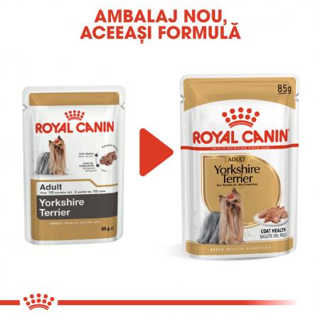 ROYAL CANIN Yorkshire Terrier hrana umeda 85g4